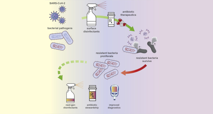 The silent pandemic: Emergent antibiotic resistances following the global response to SARS-CoV-2