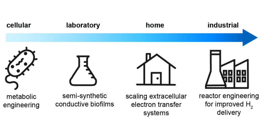 How Far Can Electromicrobial Production Go?